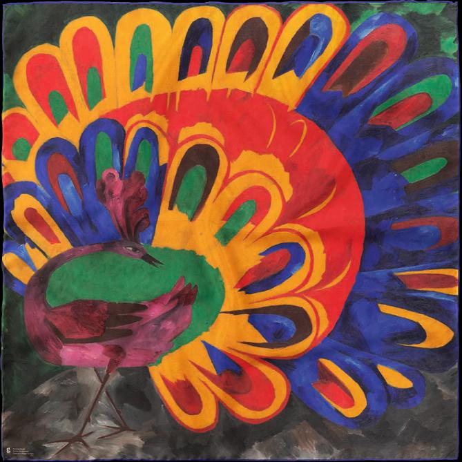 شال طاووس در نور خورشید